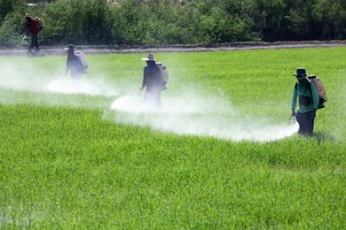 US EPA pesticide laws